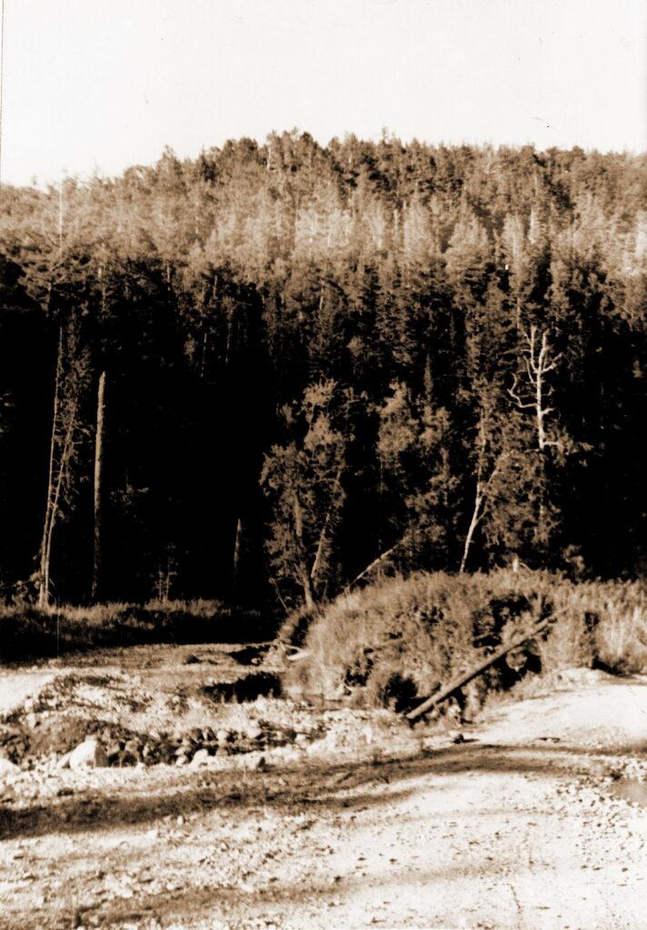 1973 год Долина (ущелье) реки Анжа
