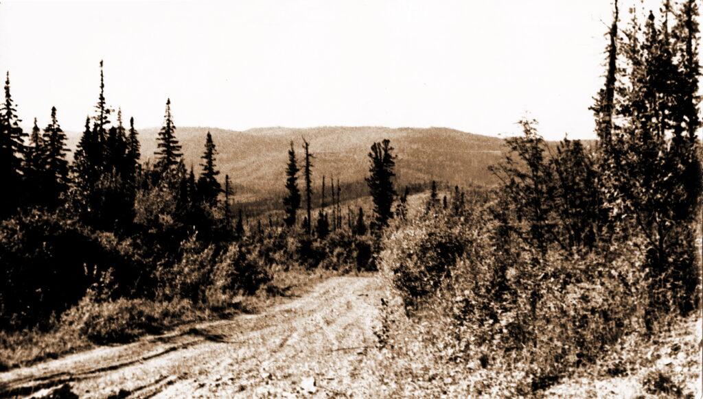1973 год На перевале долин рек Кой и Анжа Вид на долину реки Кой