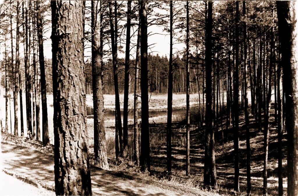 1975 год Озеро Казыкуль