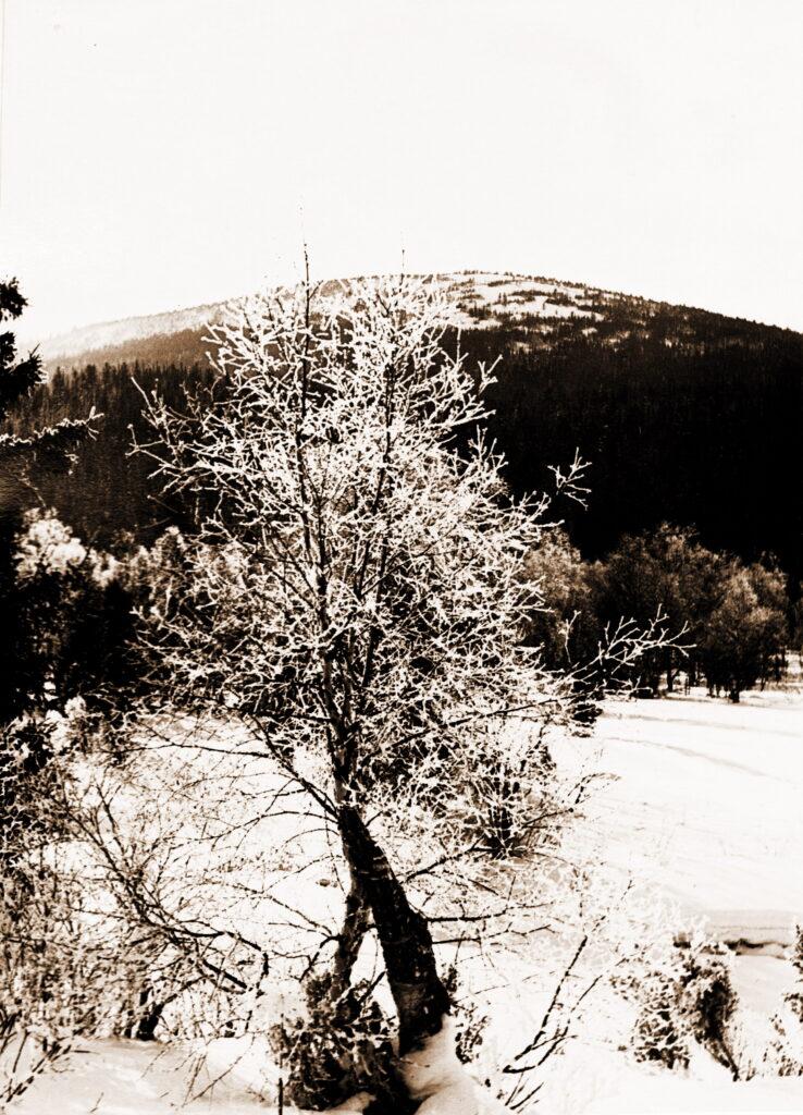 1976 год Долина реки Крол