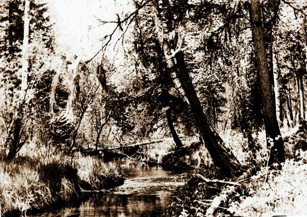 1976 год Река Мана